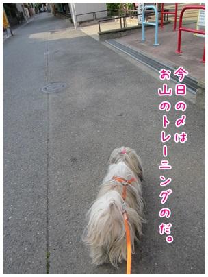 2013-04-29-02.jpg