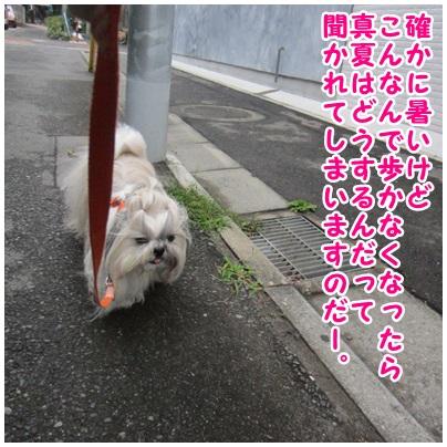 2013-07-04-02.jpg
