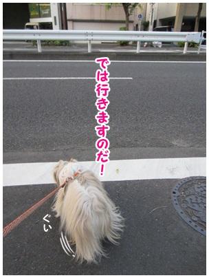 2013-07-08-09.jpg
