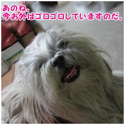 2013-07-24-01.jpg