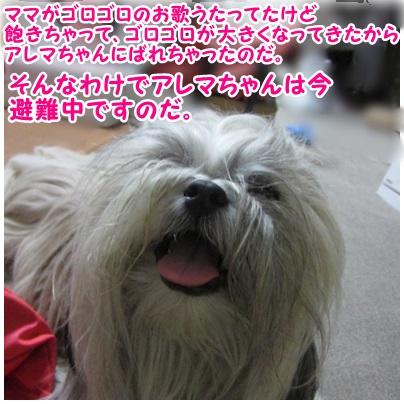2013-07-24-02.jpg