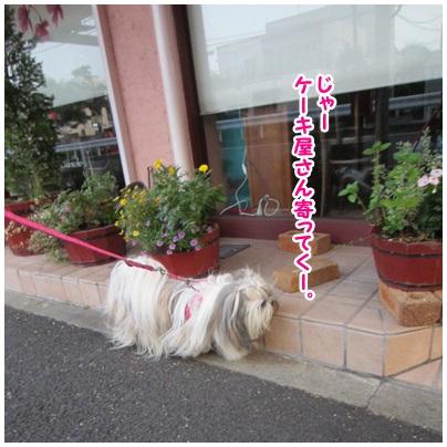 2013-08-16-03.jpg