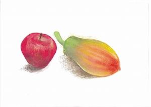 Nパステルテキスト1模写見本画・果物(リンゴ・パパイヤ)