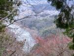 瀬田川を望む'14.1.13