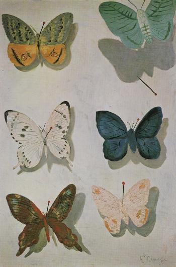 飛ぶ蝶1934年_convert_20100624141557