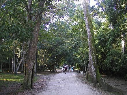 2008 GUATEMALA (66)