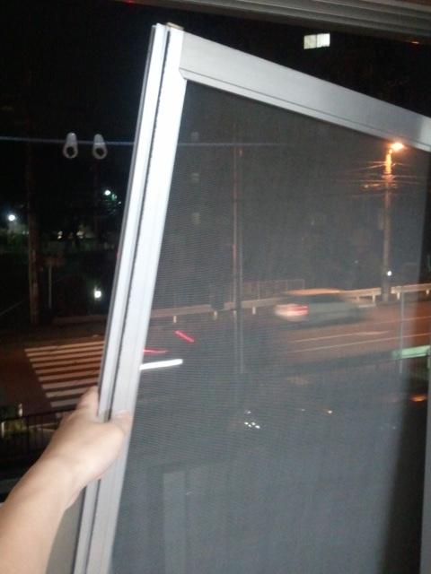 20110707amido.jpg