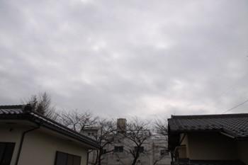 コピー ~ IMG_0563