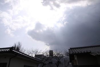 コピー ~ IMG_2010