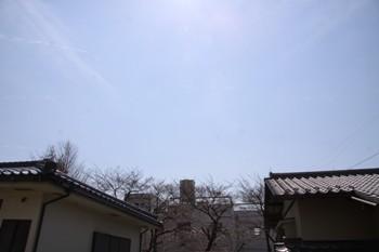 コピー ~ IMG_3757