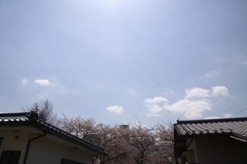 コピー ~ IMG_4891