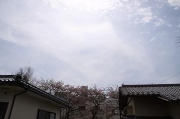 コピー ~ IMG_5108