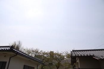 コピー ~ IMG_6204
