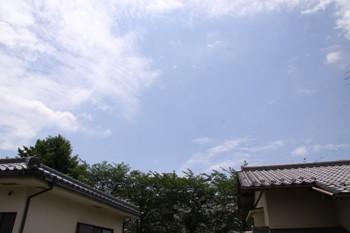 コピー ~ IMG_8889