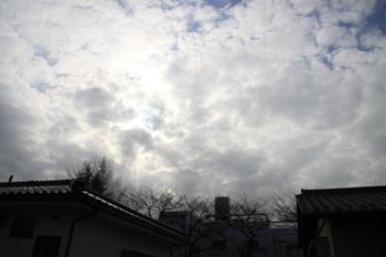 コピー ~ IMG_4446