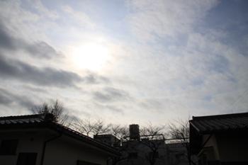 コピー ~ IMG_7146