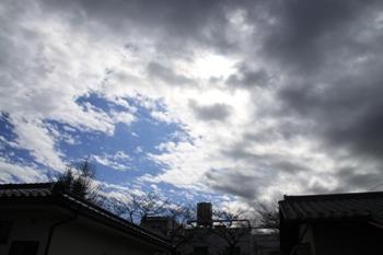 コピー ~ IMG_9392