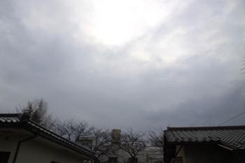 コピー ~ IMG_0001