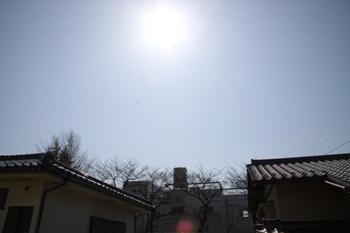 コピー ~ IMG_0104