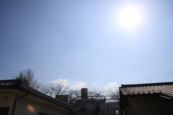 コピー ~ IMG_0380