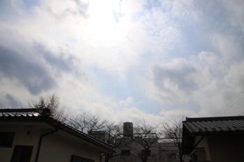 コピー ~ IMG_1435