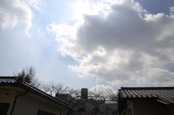 コピー ~ IMG_1566