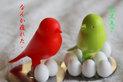 コピー ~ IMG_5069 - コピー