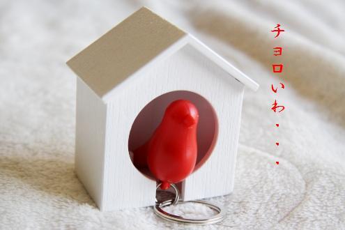 コピー ~ IMG_5071 - コピー