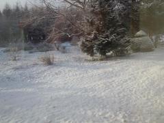 ま、軽く雪