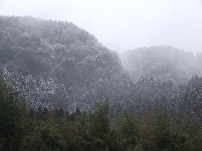 H24.1.16 雪
