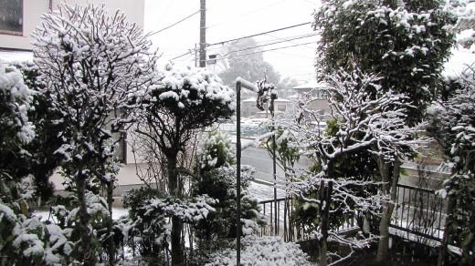 2010-02-18・朝の積雪・2