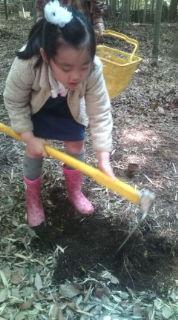 chojo 竹の子掘り 2010