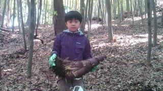 chonan 竹の子掘り 2010