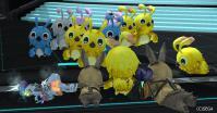 ヒヨコ祭り9
