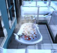 お風呂侵略