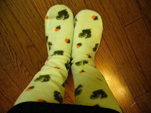 リス靴下2