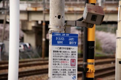 DSC00870_3.jpg