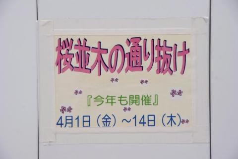 DSC08611_3.jpg