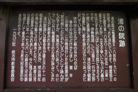 IMG_1985_4.jpg