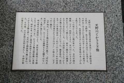IMG_4440.jpg