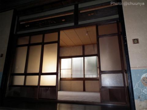 kaiko_006.jpg