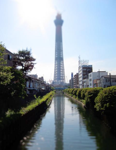 shintokyo.jpg