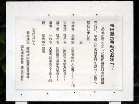 umeda2.jpg