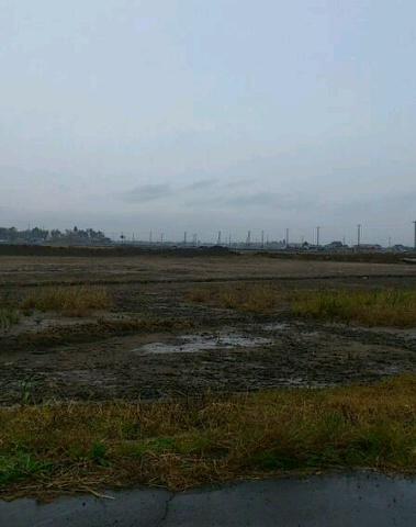 201111仙台2