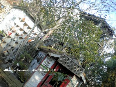 20110215-1.jpg