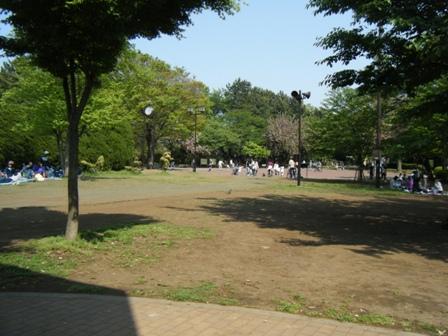 100502004.jpg