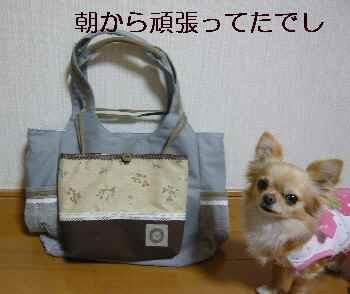 blog2010022601.jpg