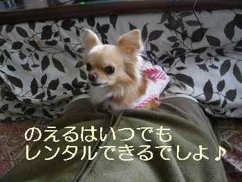 blog20100328003.jpg