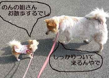 blog2010040602.jpg