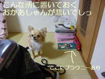 blog2010040803.jpg